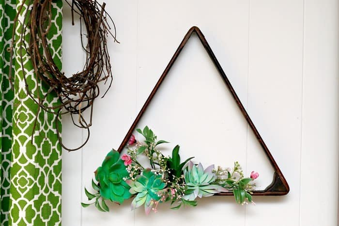 Succulent Plant Hanging Display Idea