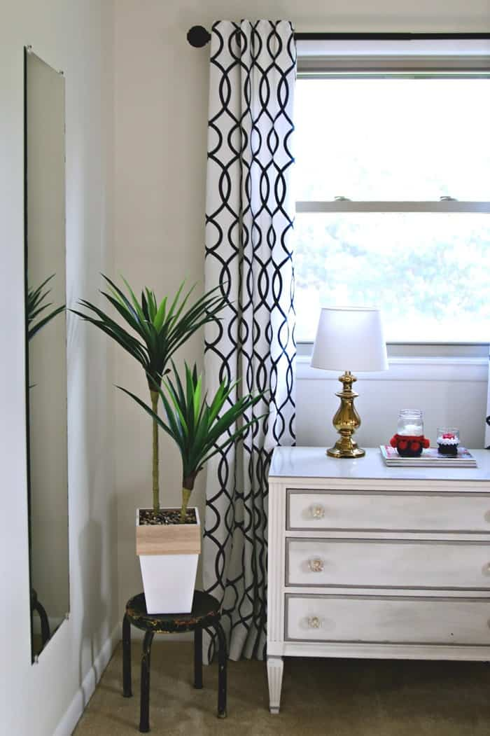green plants add warmth to any room