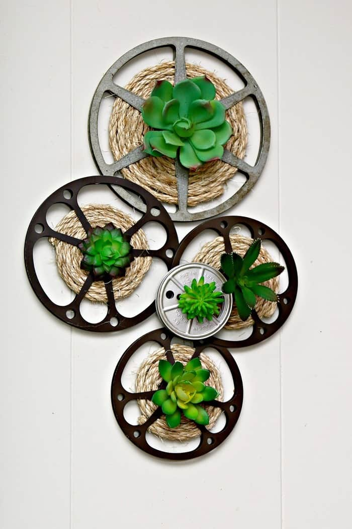 DIY Idea For Old Movie Reels | Succulent Plant Display