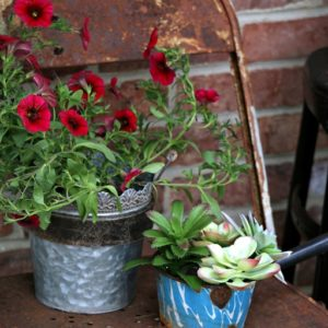 DIY Tea Kettle Flower Pots