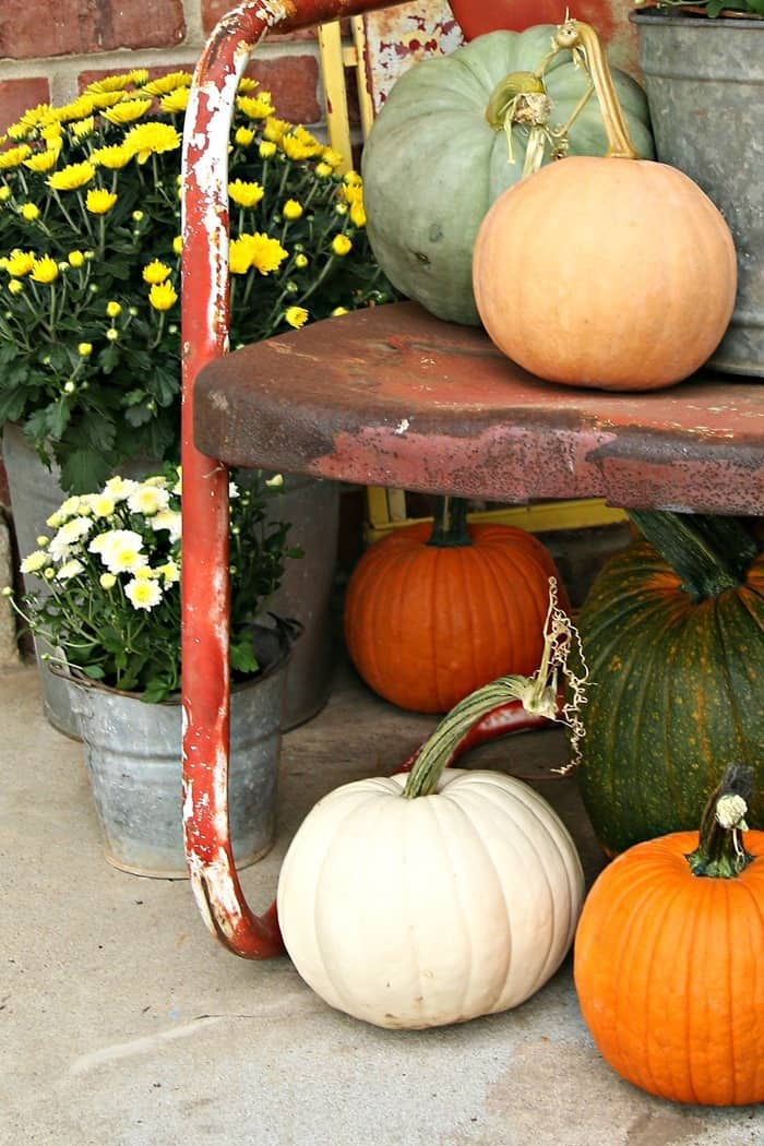 use all colors of pumpkins to decorate for Fall