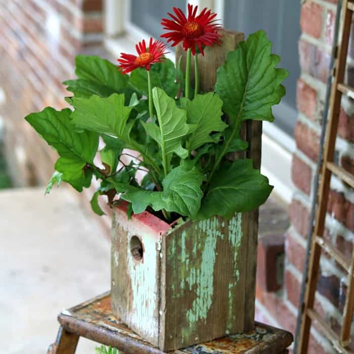 Birdhouse Flower Container