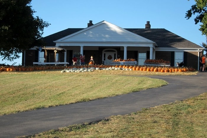 Boyd's Pumpkin Patch in Clarksville Tennessee photo by Kathy Owen Petticoat Junktion