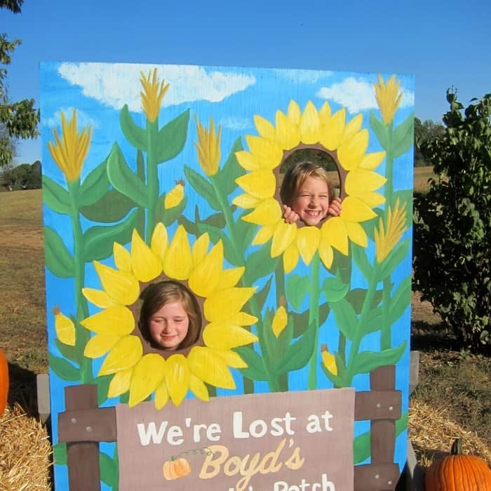 Pumpkin Patch Scenes photos by Petticoat Junktion