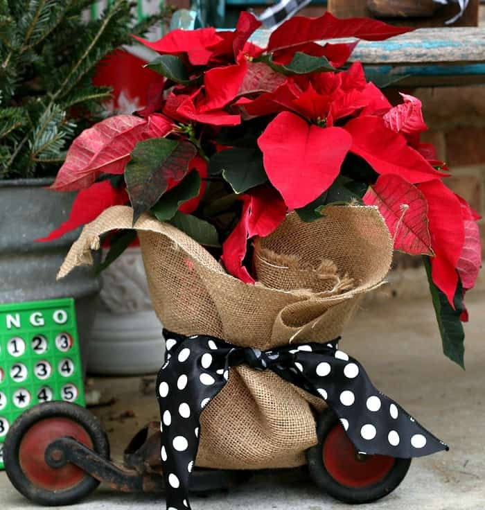 Time To Decorate The Porch For Christmas