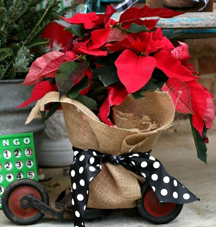 Red Poinsettia Porch Decorations With Buffalo Check Accents
