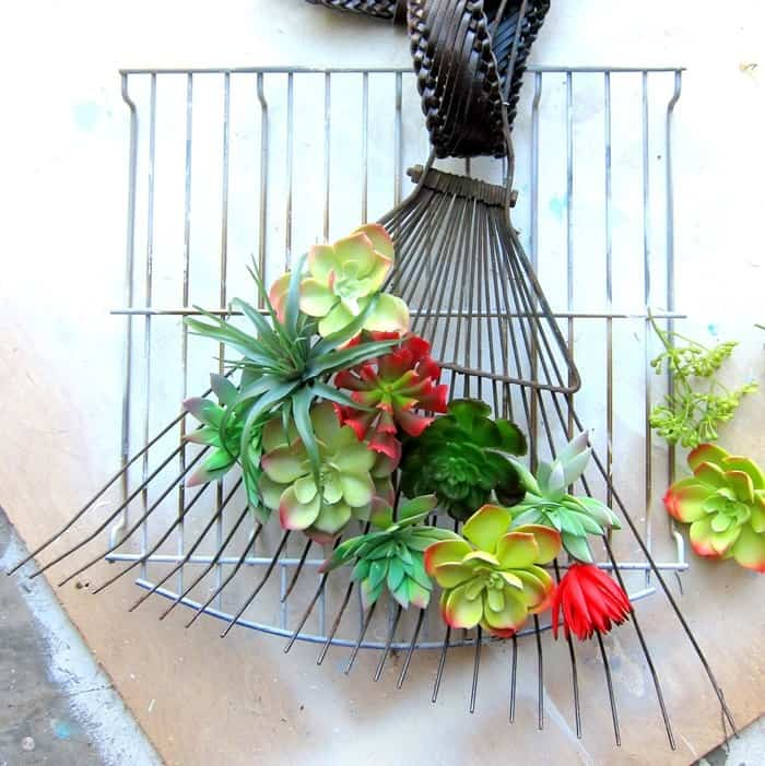 succulent plant rake wreath project