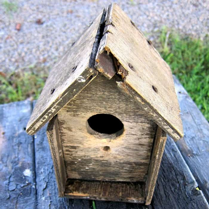 old weathered birdhouse