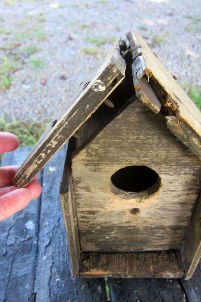 old wood birdhouse