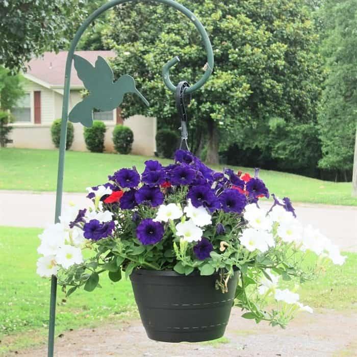 flower basket on a Shephards hook
