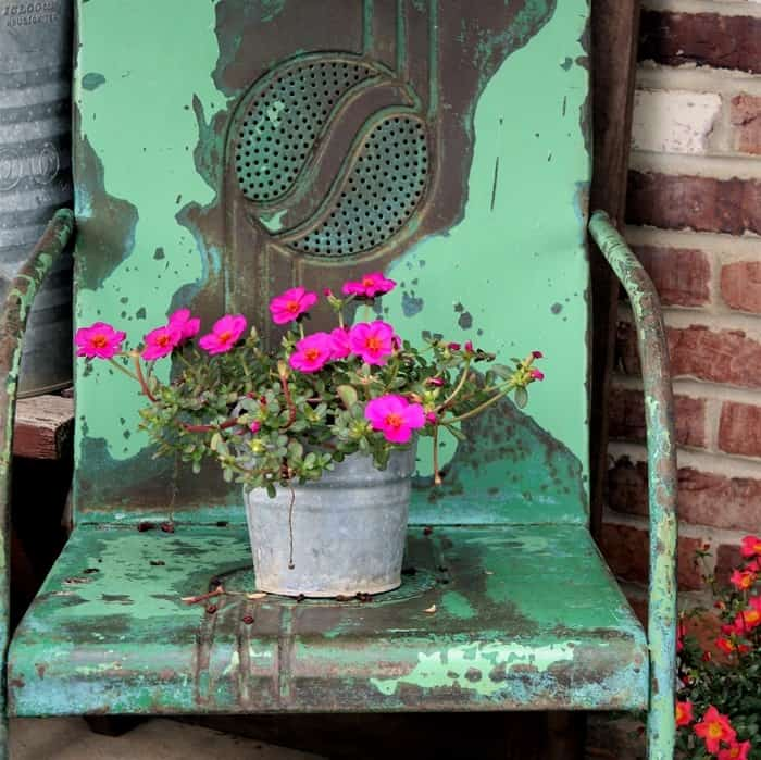 flowers in a galvanized pail sitting in a vintage metal lawn chair