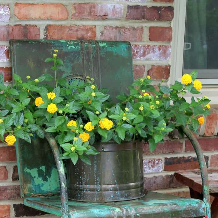 how to decorate the porch with Summer flowers in unique flower containers
