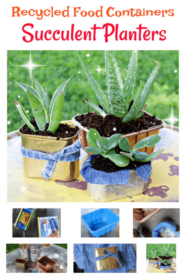 how to make succulent plant containers or pots using recycled cans or food containers
