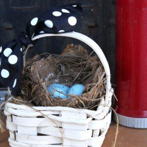 Bird Nest in a Basket