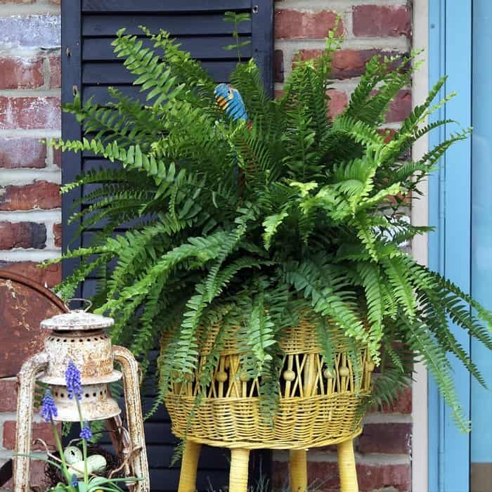 Fun Porch Decor Featuring Junk Finds And The Color Yellow