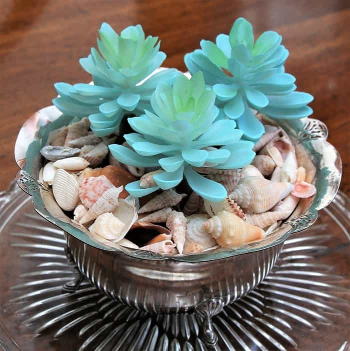 Silver Plate Succulent Planter Idea