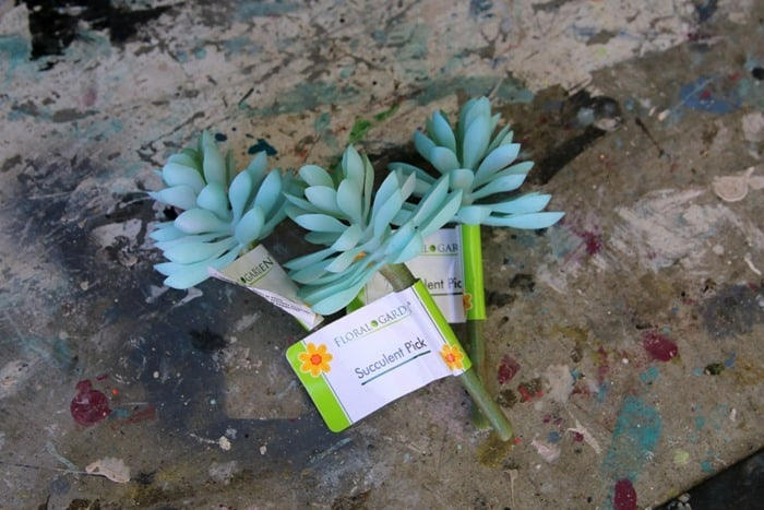faux succulent plants from Dollar Tree