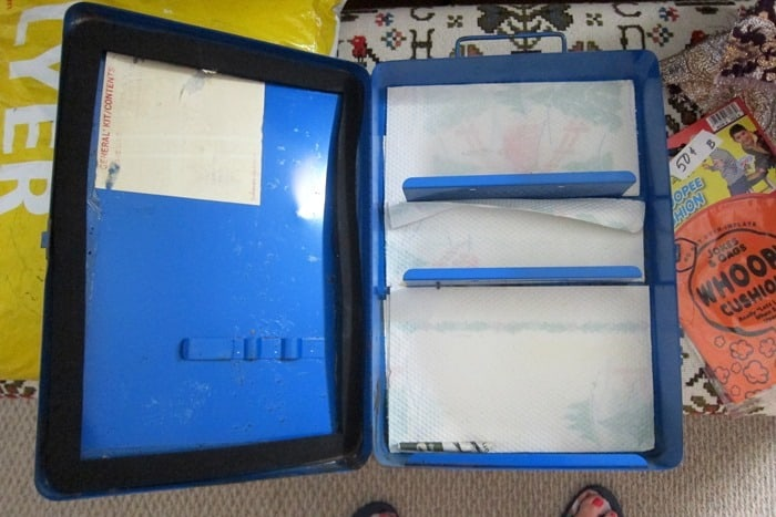 junk finds and auction buys and Goodwill shopping trip (9)